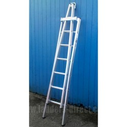 Aluminium Pointer Window Cleaners Ladder double section